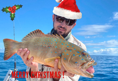 merry christmas from the team at hervey bay fly and sport fishing